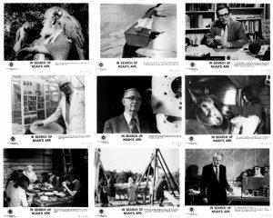 In Search of Noah's Ark, 1976.